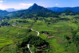 林峰:乡村旅游助推精准扶贫