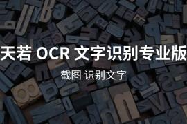 天若 OCR 文字识别专业版本[Win]