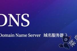 国外12个免费的DNS服务商使用总结