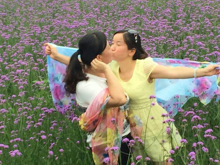 蝶恋花唯美篇—湖南溆浦思蒙薰衣草庄园第10张-菜鸟分享