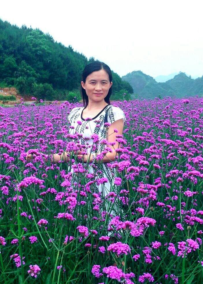 蝶恋花唯美篇—湖南溆浦思蒙薰衣草庄园第16张-菜鸟分享