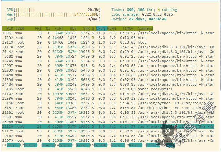 FinalShell免费的国产SSH连接工具最新版(已破解高级版功能)第5张-菜鸟分享
